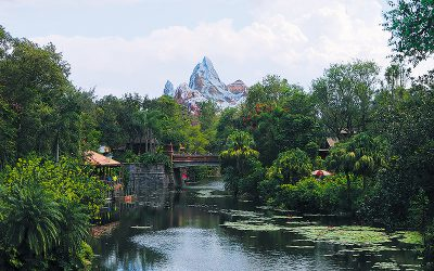 Ten Things You May Not Know About Disney's Animal Kingdom