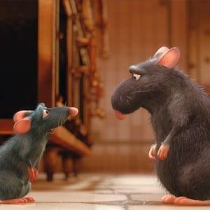 Ratatouille Django